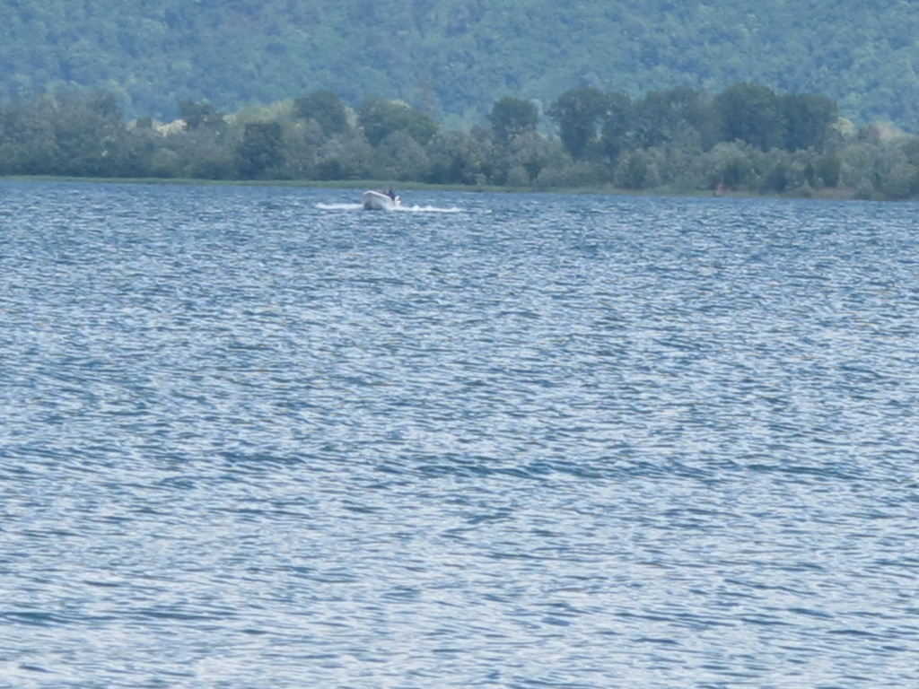 Comersee026