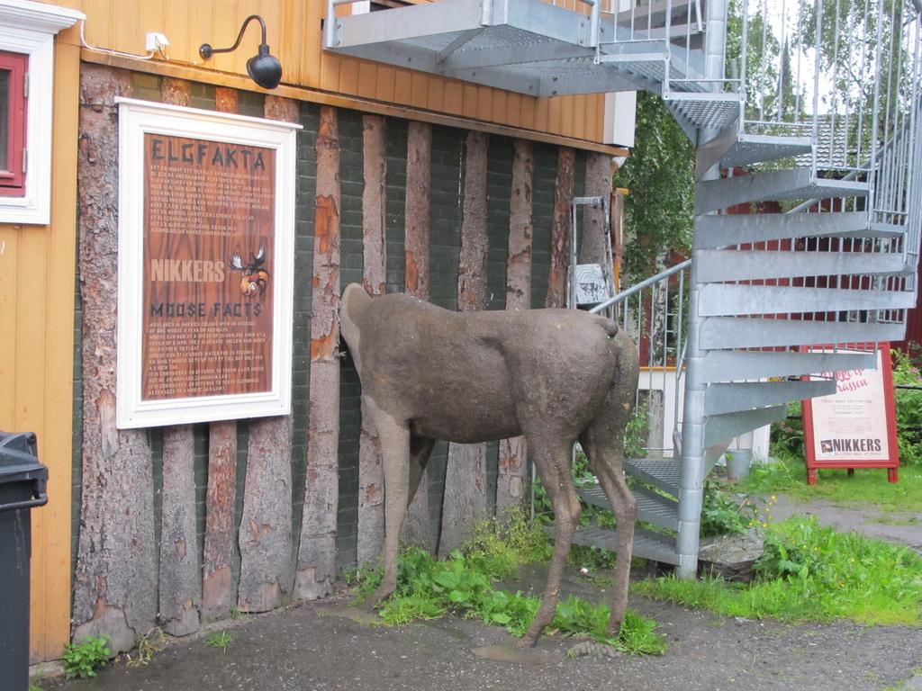 skandinavien2012_351